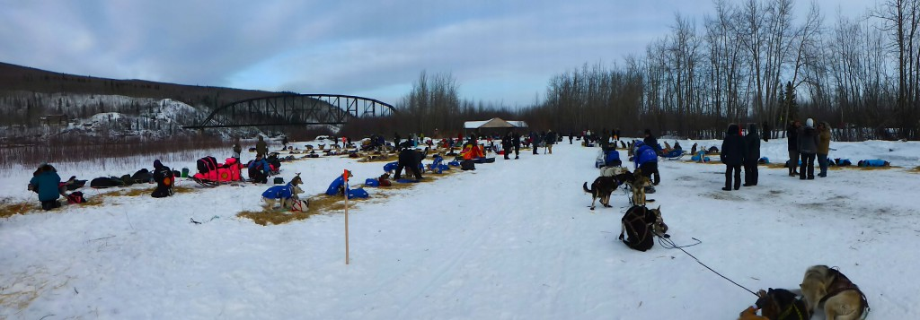 Der untere Dog-Lot in Nenana