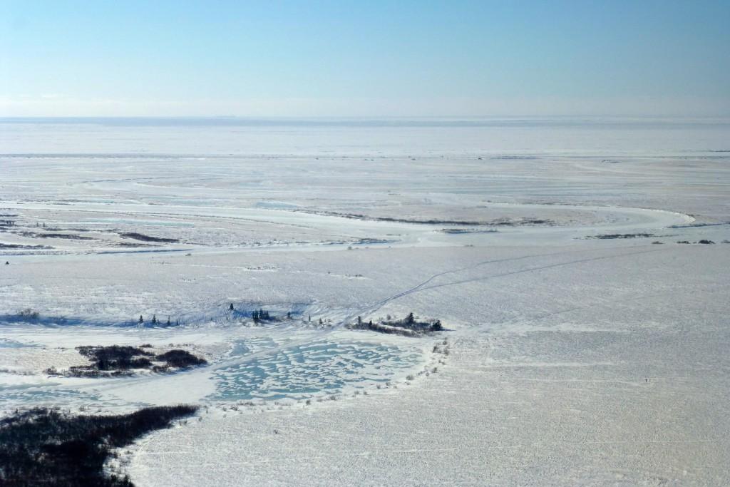 ...bevor er den Strand des Beringmeers entlanggeht